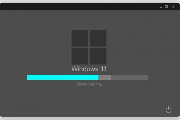 Windows once y el verano del amor